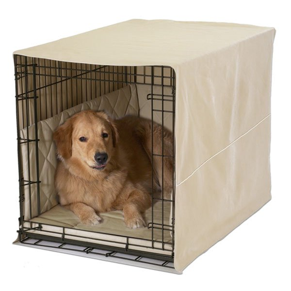 dog crate: